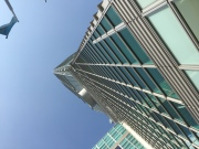 Trying to see the top of Taipei 101 just makes your neck hurt
